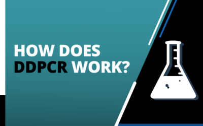 How does ddPCR work?