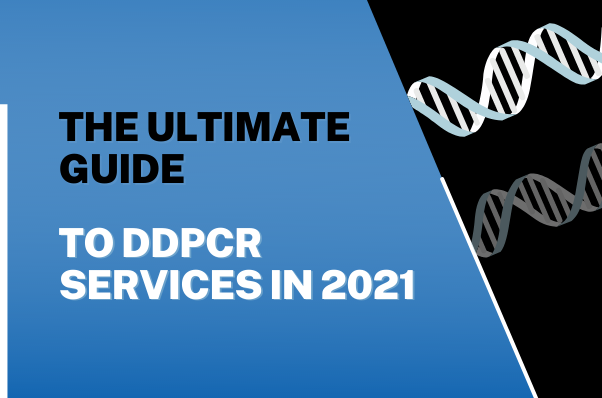 The ultimate guide to ddpcr services