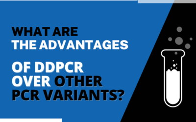 What Are the Advantages of ddPCR Over Other PCR Variants?